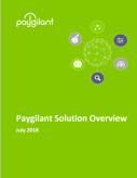 Paygilant Overview
