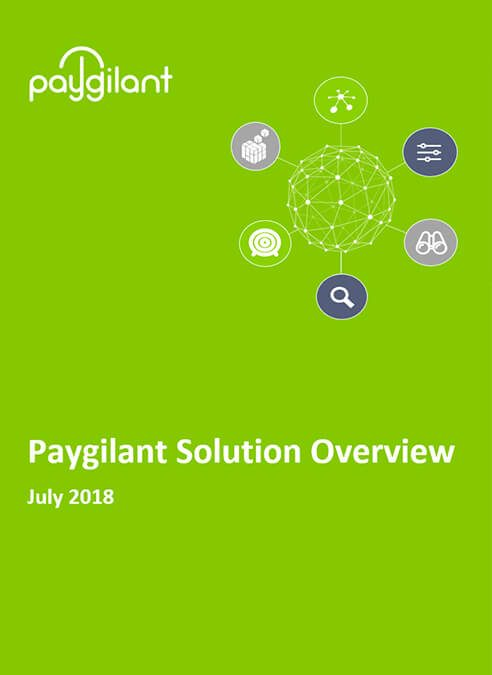 Paygilant Overview  2018